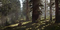 《荒野大镖客2》线上模式营地怎么分布?线上营地分布位置一览