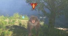 《古剑奇谭3》初期无伤打猴王方法介绍 怎么无伤打猴王