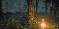 《荒野大镖客2》全特殊角色位置一览 特殊角色位置都在哪?