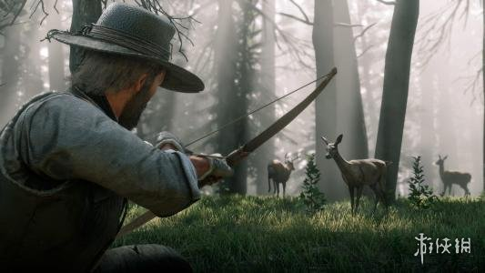 荒野大镖客2新手打猎需要注意什么 新手打猎注意事项分享