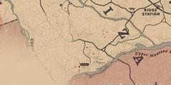 《荒野大镖客2》三星毛皮狩猎技巧分享 三星毛皮怎么获得?