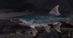 《孤岛惊魂5》钓鱼技巧图文解析 怎么钓鱼比较轻松?