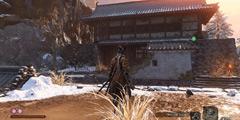 《只狼影逝二度》PS4手柄无法使用解决方法 WIN10无法开启独占模式怎么办