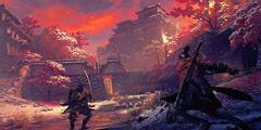 《只狼影逝二度》金刚山怎么去 金刚山仙峰寺前往方法分享