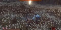 《只狼影逝二度》剑圣怎么打 一心打法教程