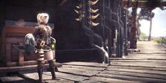 《怪物猎人世界》新DLC高分辨率材质包最低配置要求介绍 新材质包DLC使用要求说明