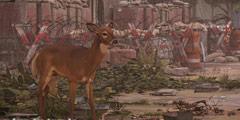 《全境封锁2》全动物图鉴一览 动物有哪些