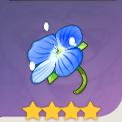 旅人的野花