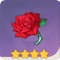 战狂的蔷薇