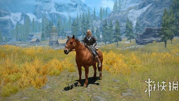 上古卷軸5(The Elder Scrolls V: Skyrim)馬匹翻新MOD