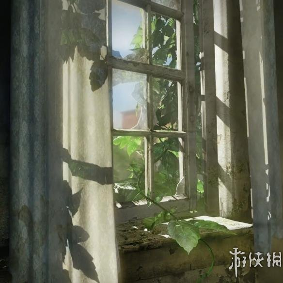 Wallpaper Engine(Wallpaper Engine)The Last of Us HDR 1080P