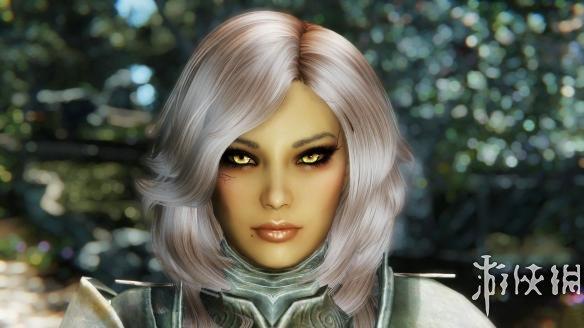 上古卷軸5:天際重制版(The Elder Scrolls V: Skyrim Special Edition)藍垂隨從MOD