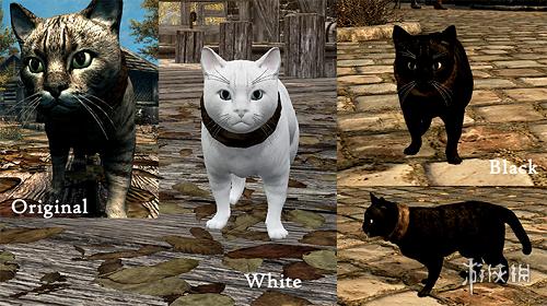 上古卷軸5(The Elder Scrolls V: Skyrim)寵物家貓毛色發聲包MOD