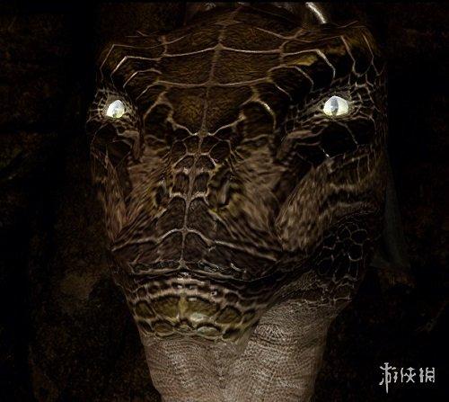 上古卷軸5:天際(The Elder Scrolls V: Skyrim)終極眼網包MOD