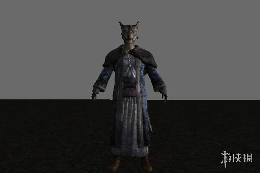 上古卷軸5:天際(The Elder Scrolls V: Skyrim)虎人的配偶阿扎瓦裡MOD