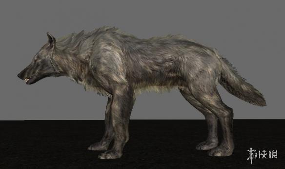 上古卷軸5:天際  樣貌更兇殘的狼MOD_上古卷軸5:天際遊戲MOD