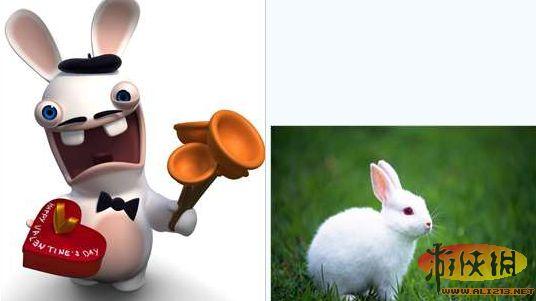 后来推出的《疯狂兔子》大获成功之后