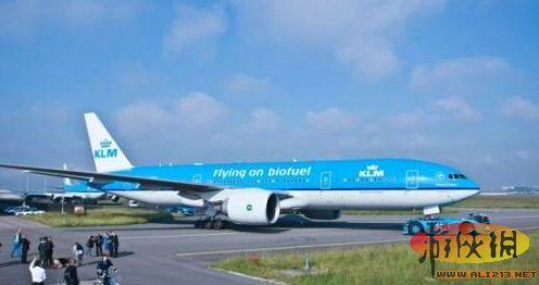 00,-0.49%)的标准,生产成为航空生物煤油.