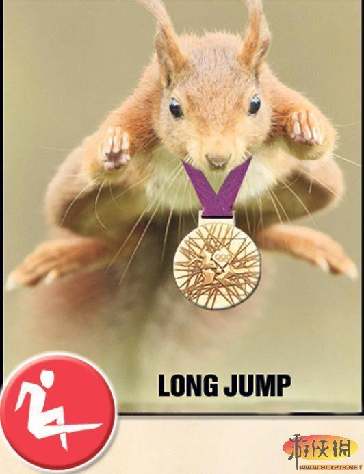 英国某杂志7月刊就刊登了有趣的动物奥运冠军,展现了大自然的无穷魅力