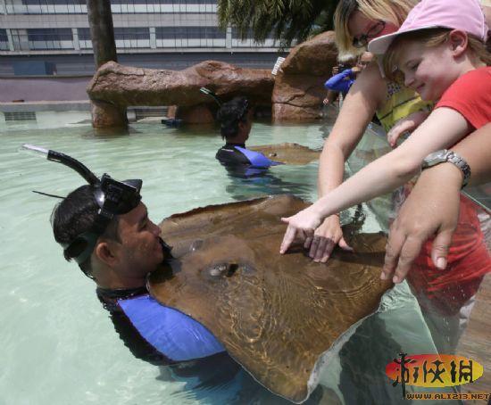 菲律宾首都马尼拉海洋公园落成仪式上,国外游客们在池外触摸鳐鱼.