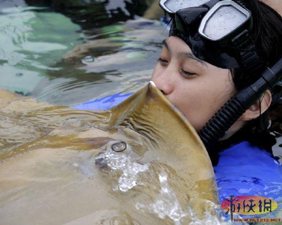 2013年9月2日,在菲律宾首都马尼拉海洋公园落成仪式上,鳐鱼和鲨鱼