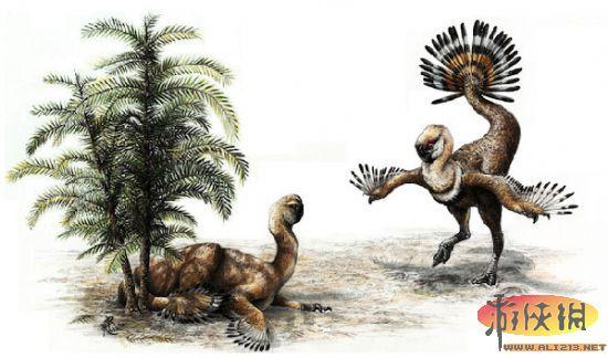 盘点十大史前恐龙新发现 用摇尾的方式来求爱图片