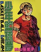 少年篮球梦 - NBA2K13