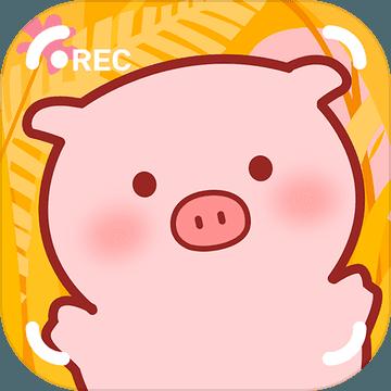 萌萌哒小猪可爱图片