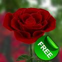 3D玫瑰动态壁纸 免费版