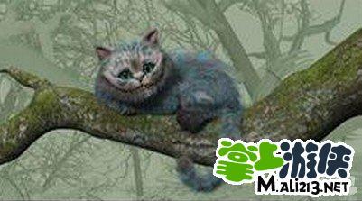 《爱丽丝快跑》柴郡猫体力恢复方法