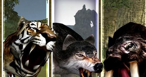 狼被视为狡诈危险的动物,是一种群居性动物,常常由一头强壮的
