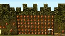 《我的世界》半自动可可豆农场图文教程