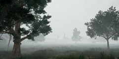 《绝地求生大逃杀》雾天地图效果一览 雾天地图效果怎样?
