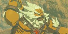 《塞尔达传说:荒野之息》DLC2试炼神庙速通视频分享