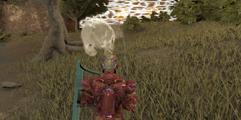 《方舟:生存进化》仙境地图沙漠矿洞神器全收集图文攻略