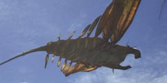 《怪物猎人世界》全小动物收集图文攻略 怎么抓小动物?