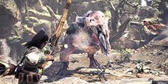 《怪物猎人世界》弓技能选择 弓用什么技能好?