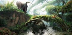 《怪物猎人世界》环境道具分布大全 环境道具有哪些?