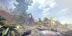 《怪物猎人世界》古代树森林地图全素材采集位置一览