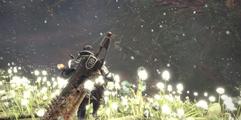 《怪物猎人世界》龙结晶之地地图全收集攻略 龙结晶之地地图详解