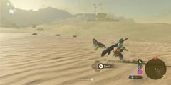 《塞尔达传说:荒野之息》骆驼怎么打?骆驼和最终Boss打法分享
