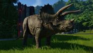 恐龙种类背景介绍视频