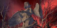 《血污:夜之仪式》全支线任务通关流程+全地图详解图文攻略【完结】