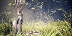 《怪物猎人世界》弓箭按键设置心得 弓箭怎么设置键位?