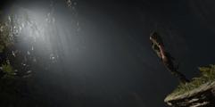 《古墓丽影:暗影》黄金武器领取方法介绍 黄金四件套怎么获得?