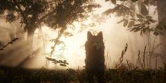 《荒野大镖客2》终极版与特别版区别介绍 特别版奖励有哪些?