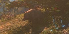 《河洛群侠传》隐藏彩蛋有哪些?游戏隐藏彩蛋视频分享