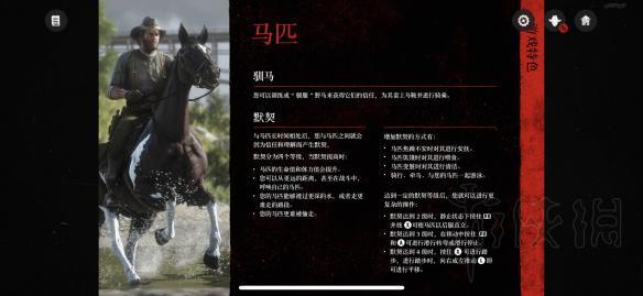 荒野大镖客2马匹系统介绍 荒野大镖客2马匹该怎么养