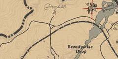 《荒野大镖客2》驼鹿在哪里?传奇动物驼鹿位置一览