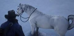 《荒野大镖客2》阿拉伯白马多少章才有?白马捕捉及驯服方法视频教学